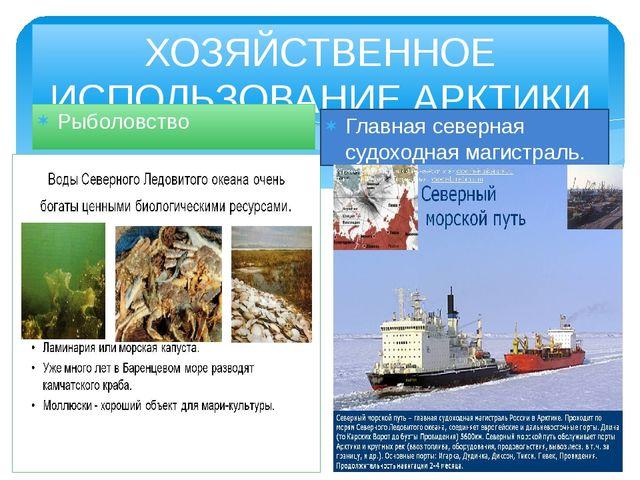 ХОЗЯЙСТВЕННОЕ ИСПОЛЬЗОВАНИЕ АРКТИКИ Рыболовство Главная северная судоходная м...