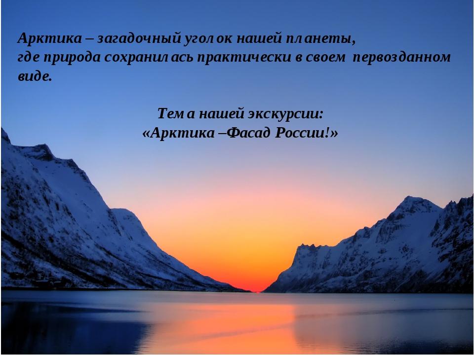 Арктика – загадочный уголок нашей планеты, где природа сохранилась практичес...