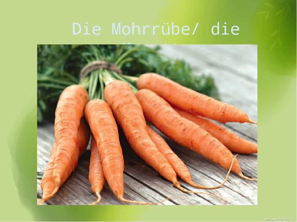 Die Mohrrübe/ die Karotte