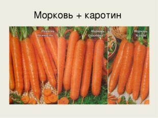 Морковь + каротин