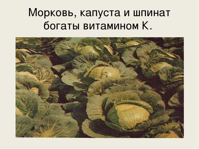 Морковь, капуста и шпинат богаты витамином К.