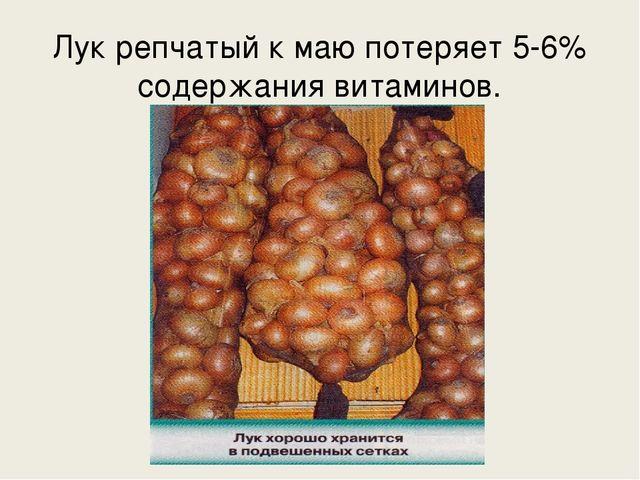 Лук репчатый к маю потеряет 5-6% содержания витаминов.