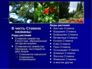 В честь Стевена названы: Роды растений Стевения семейства Капустные, образов