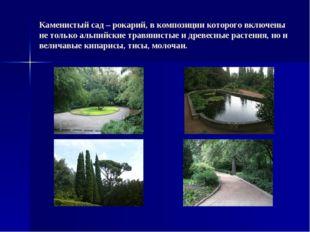 Каменистый сад – рокарий, в композиции которого включены не только альпийские