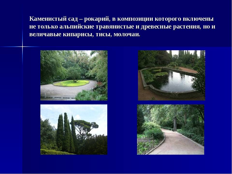 Каменистый сад – рокарий, в композиции которого включены не только альпийские...