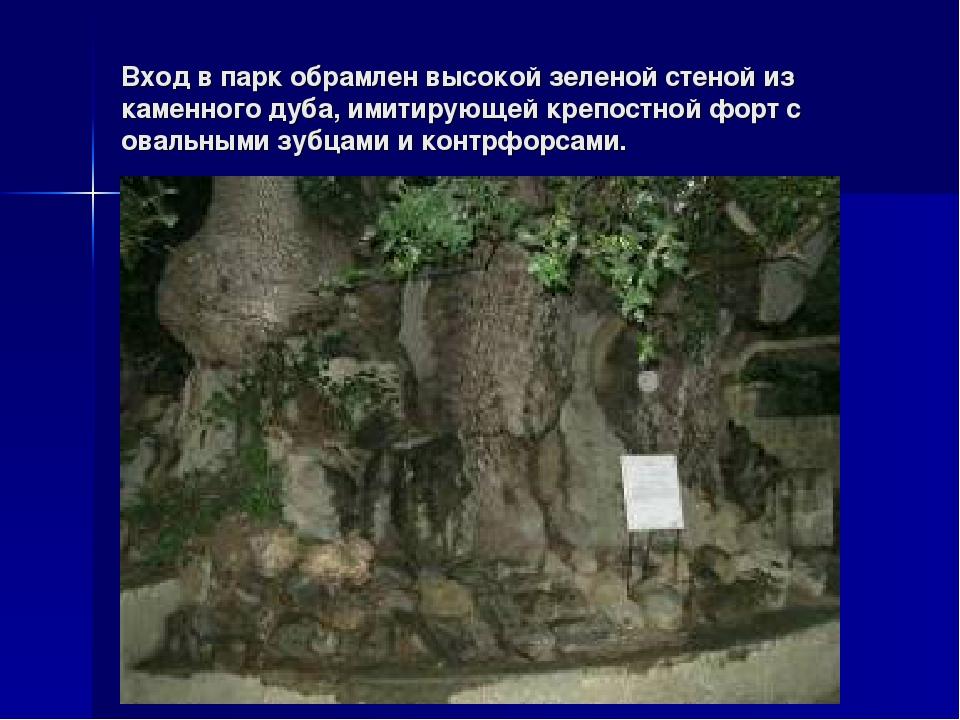 Вход в парк обрамлен высокой зеленой стеной из каменного дуба, имитирующей кр...