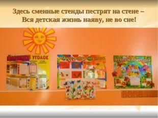 Здесь сменные стенды пестрят на стене – Вся детская жизнь наяву, не во сне!