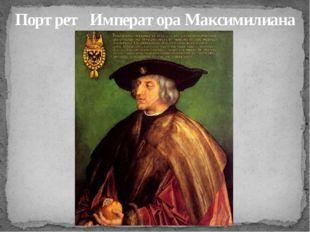 Портрет Императора Максимилиана I, 1519