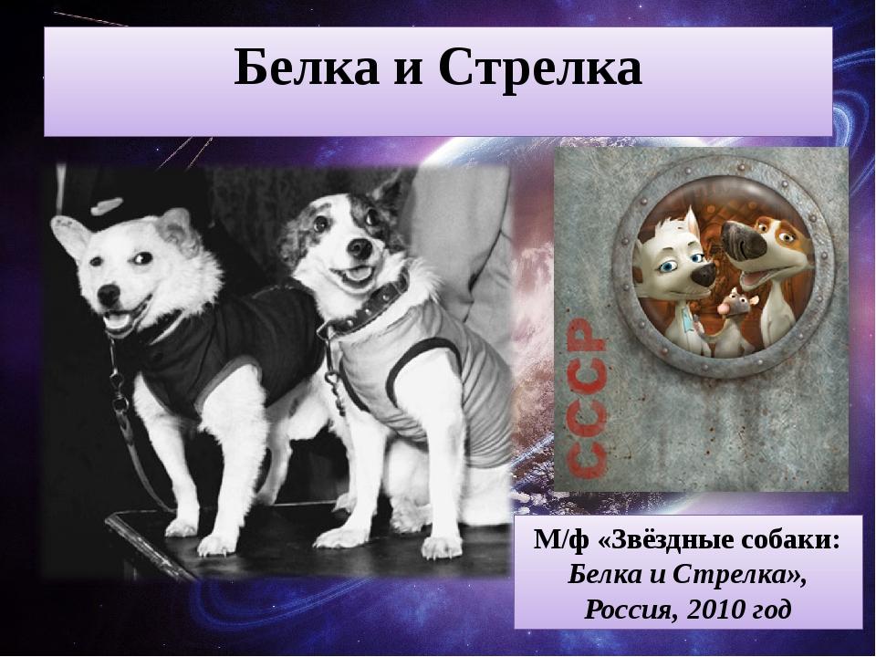 Белка и Стрелка М/ф «Звёздные собаки: Белка и Стрелка», Россия, 2010 год