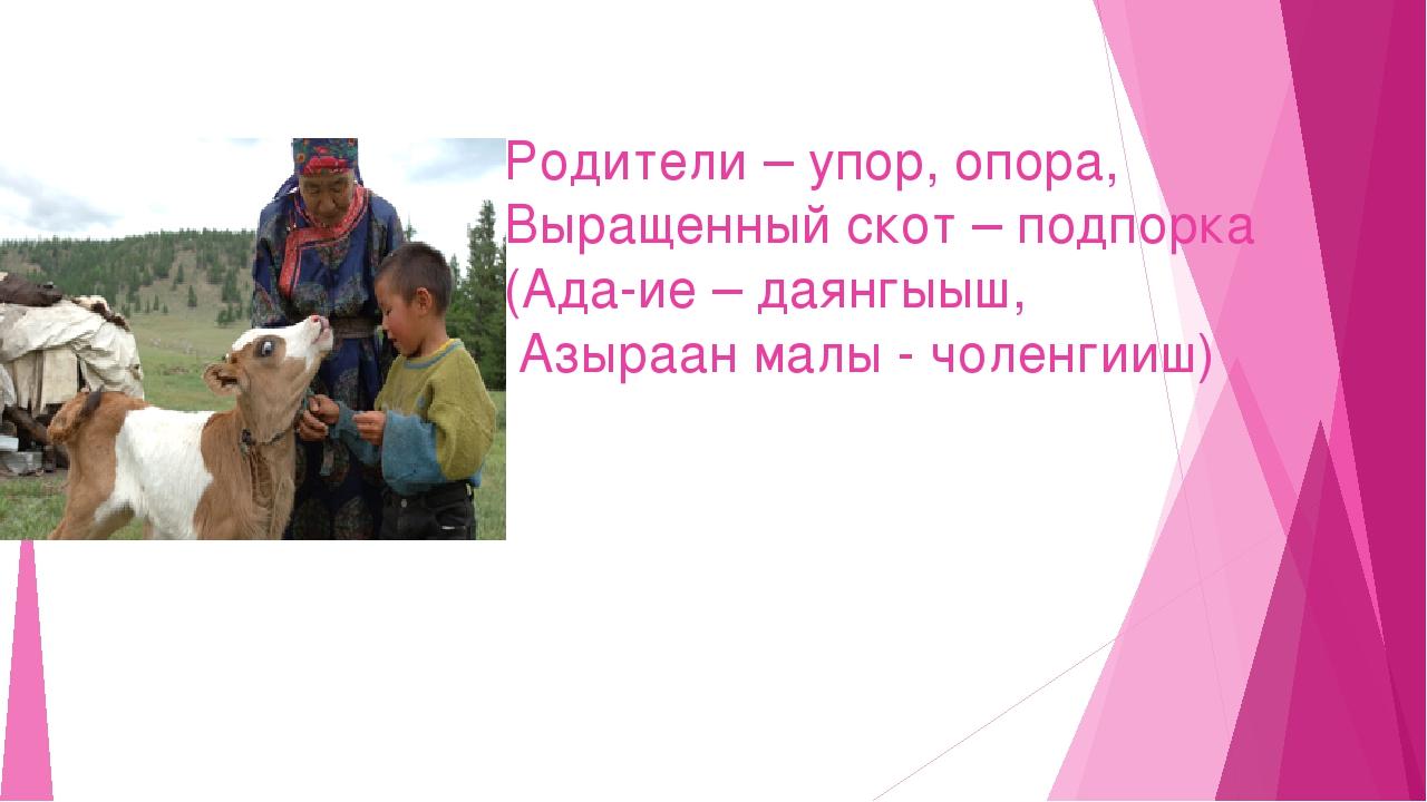 Родители – упор, опора, Выращенный скот – подпорка (Ада-ие – даянгыыш, Азыраа...