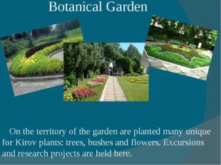 Botanical Garden On the territory of the garden are planted many unique for K