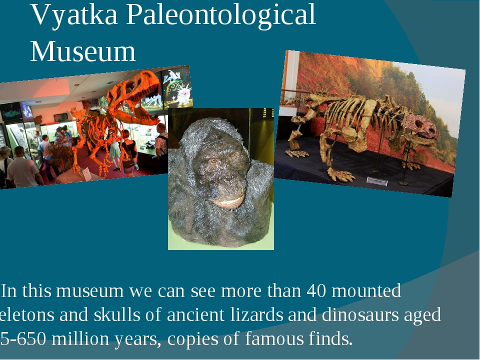 Vyatka Paleontological Museum In this museum we can see more than 40 mounted...