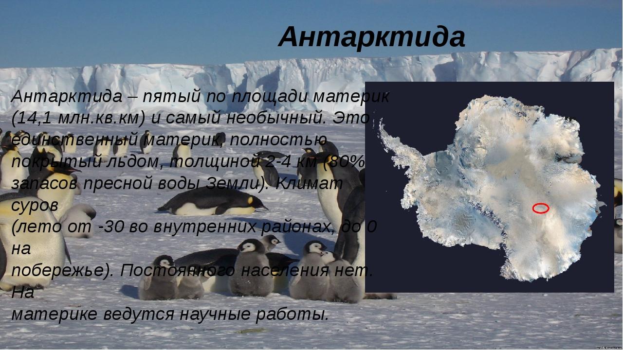 Антарктида Антарктида – пятый по площади материк (14,1 млн.кв.км) и самый не...