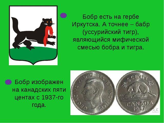 Бобр есть на гербе Иркутска. А точнее – бабр (уссурийский тигр), являющийся м...
