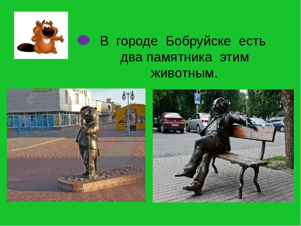 В городе Бобруйске есть два памятника этим животным.