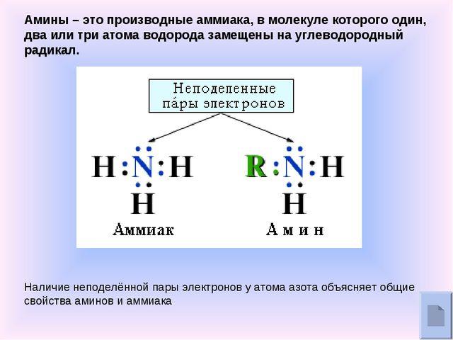 Амины – это производные аммиака, в молекуле которого один, два или три атома...