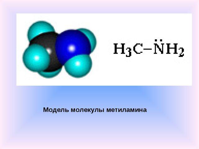 Модель молекулы метиламина