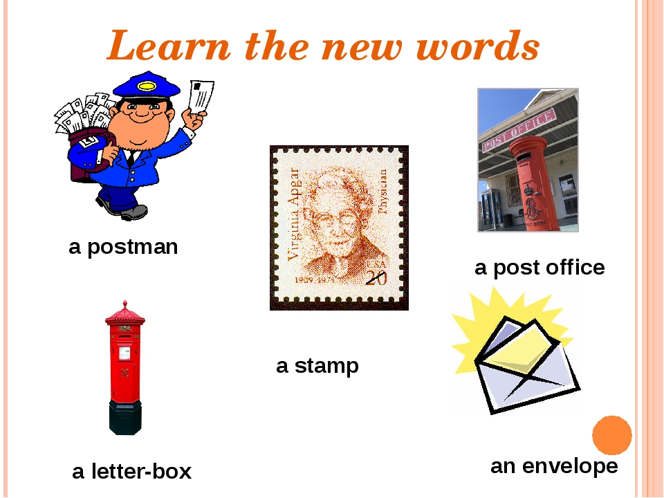 a postman a letter-box an envelope a post office a stamp Learn the new words