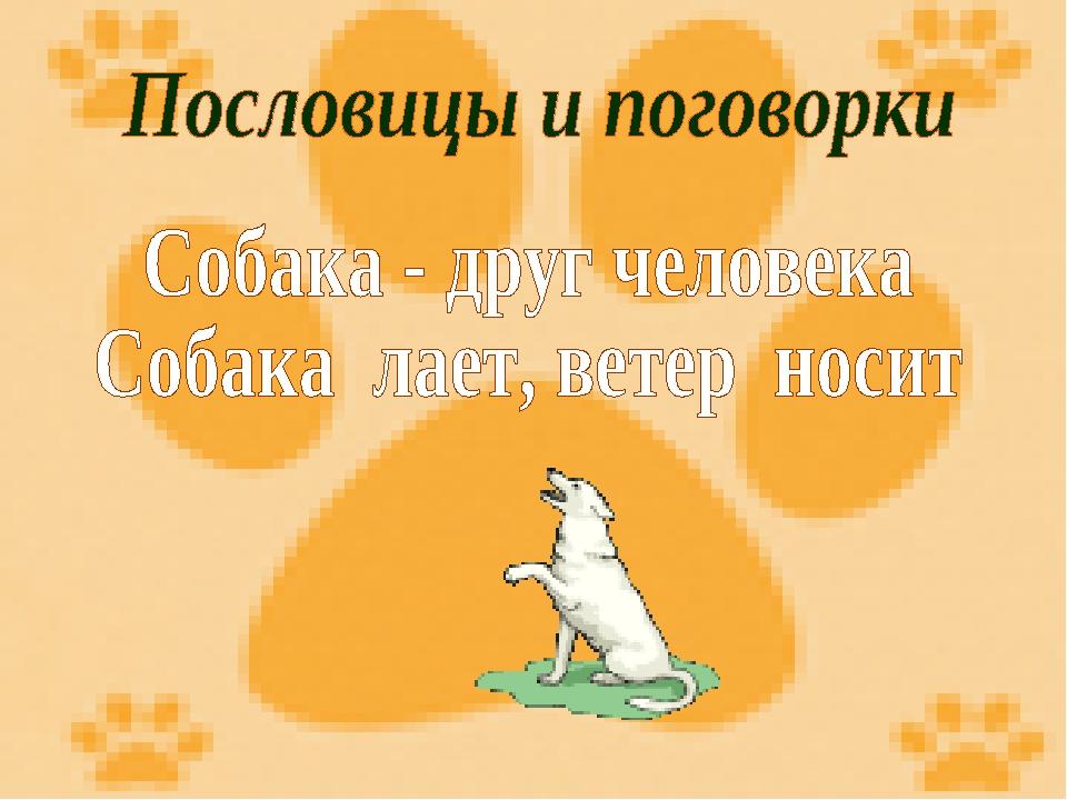 Собака друг человека это пословица или поговорка
