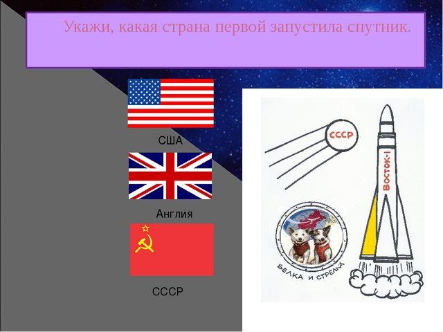Укажи, какая страна первой запустила спутник. Англия США СССР