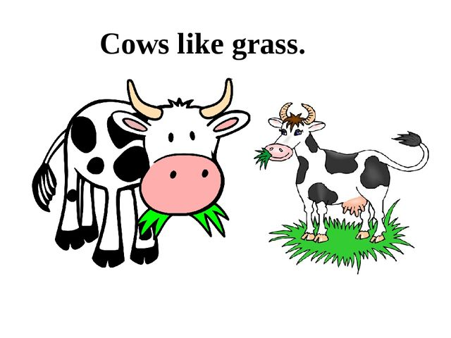 Cows like grass.
