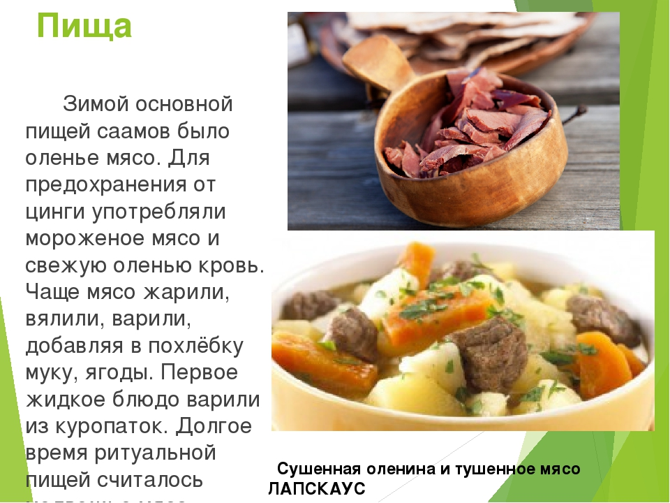 Пища Зимой основной пищей саамов было оленье мясо. Для предохранения от цинги...