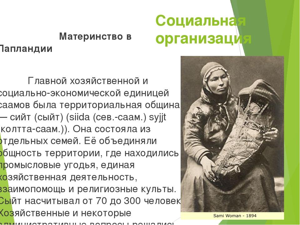 Социальная организация Материнство в Лапландии Главной хозяйственной и социал...