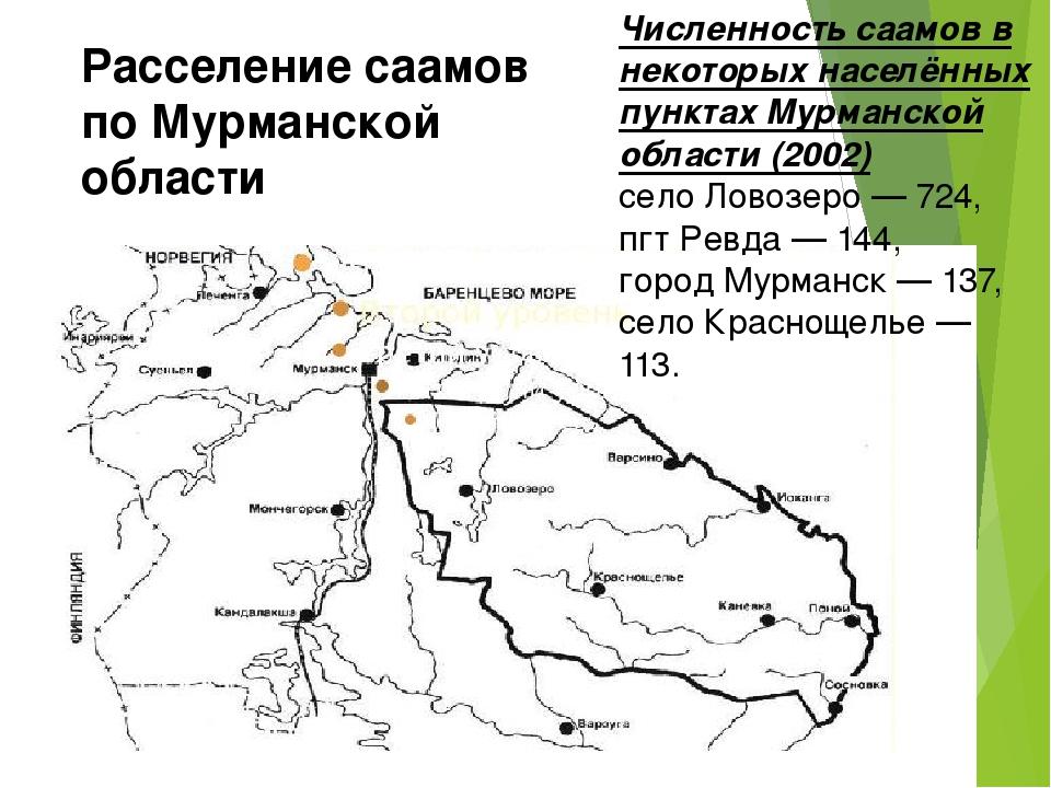 Расселение саамов по Мурманской области Численность саамов в некоторых населё...