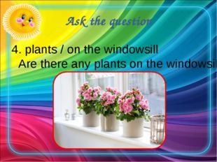 Ask the question 4. plants / on the windowsill Are there any plants on the wi
