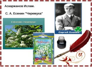 """Аскаржанов Ислам. С. А. Есенин """"Черемуха"""""""