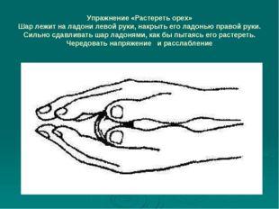 Упражнение «Растереть орех» Шар лежит на ладони левой руки, накрыть его ладон
