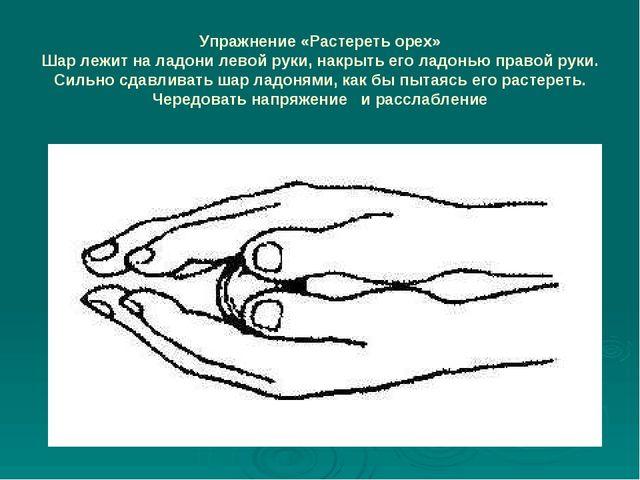 Упражнение «Растереть орех» Шар лежит на ладони левой руки, накрыть его ладон...