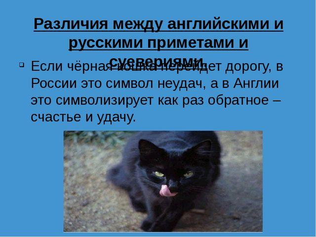 Различия между английскими и русскими приметами и суевериями. Если чёрная кош...
