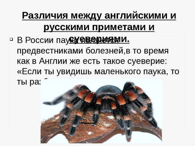 Различия между английскими и русскими приметами и суевериями. В России пауки...