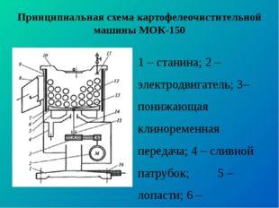 Принципиальная схема картофелеочистительной машины МОК-150 1 – станина; 2 – э