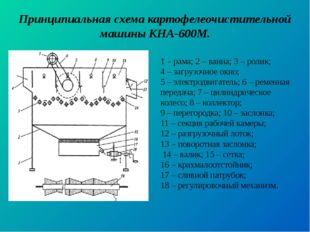 Принципиальная схема картофелеочистительной машины КНА-600М. 1 – рама; 2 – ва
