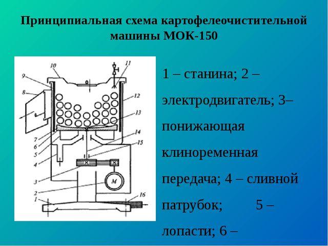 Принципиальная схема картофелеочистительной машины МОК-150 1 – станина; 2 – э...