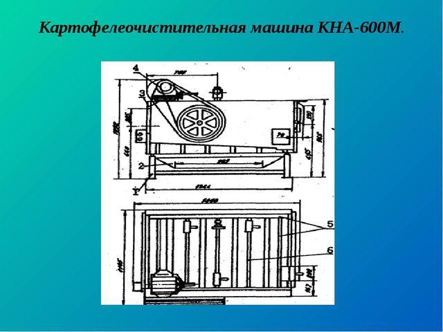 Картофелеочистительная машина КНА-600М.