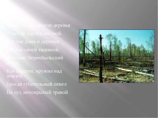 В тот год почернели деревья И лес не оделся листвой. Пустые дома и деревни Пу...
