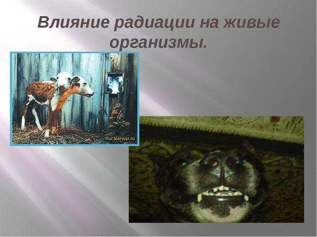 Влияние радиации на живые организмы.