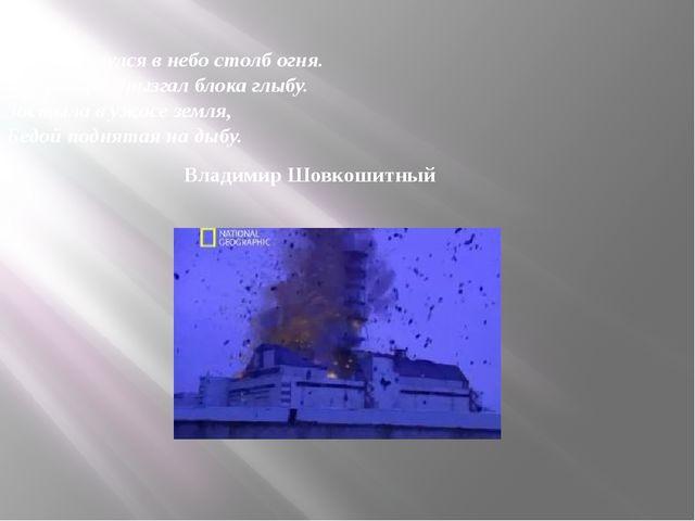 Взметнулся в небо столб огня. И взрыв разбрызгал блока глыбу. Застыла в ужас...