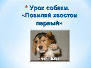 Урок собаки. «Повиляй хвостом первый»