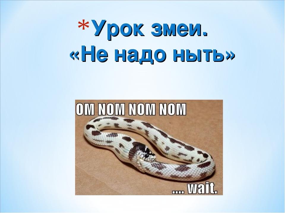 Урок змеи. «Не надо ныть»
