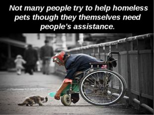 Not many people try to help homeless pets though they themselves need people