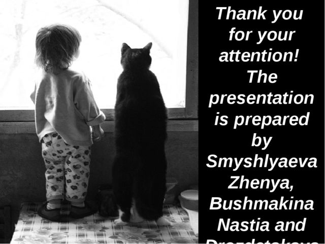 Thank you for your attention! The presentation is prepared by Smyshlyaeva Zh...