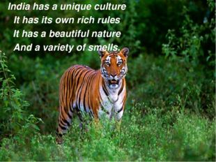 India has a unique culture It has its own rich rules It has a beautiful natur