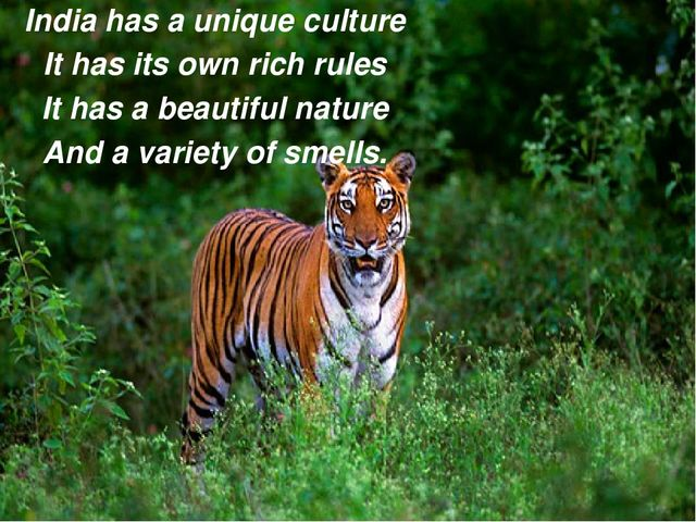 India has a unique culture It has its own rich rules It has a beautiful natur...