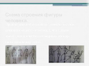 Схема строения фигуры человека. Древнегреческий скульптор Поликлет в своем со