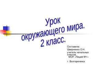 Составила: Шверненко О.Н. учитель начальных классов МОУ «Лицей №1» г. Волгоре