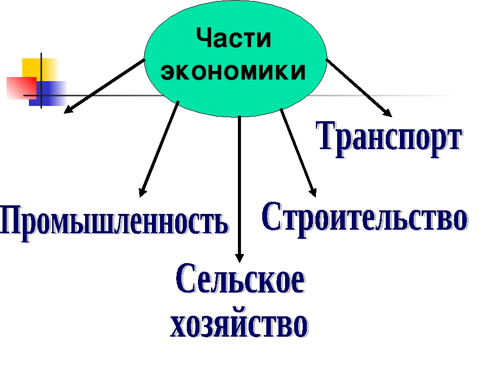 Части экономики